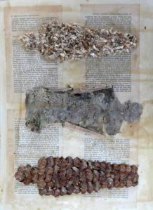 fig IV - paper, pine cones, sawdust, bark, beeswax - 30 x 41 cm